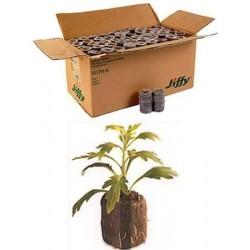 1000 Count (Full Case) - Jiffy 7 Peat Pellets - Seed Starter Soil Plugs - 36 mm - Start Seedlings Indoors - Easy To Transplant to Garden