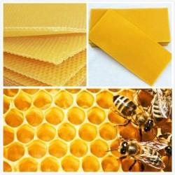 30Pcs Beehive Brood Box Wired Wax Foundation Honeycomb Sheets Beekeeping Tools